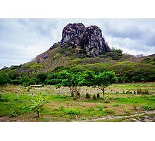 Fijian freshness Photographic Print