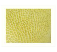 Delusional Honeycomb Art Print