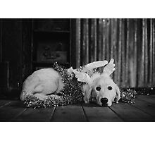 Black and white christmas angel Photographic Print