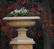 Sandstone planter by Lawrence Meckan