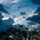 Blue Sky by Akira