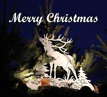 Merry Christmas by Vicki Spindler (VHS Photography)