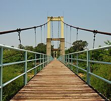 Suspension bridge by Alexander Gitlits