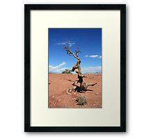 Twisted Desert Framed Print