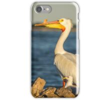White Pelican and Pals iPhone Case/Skin