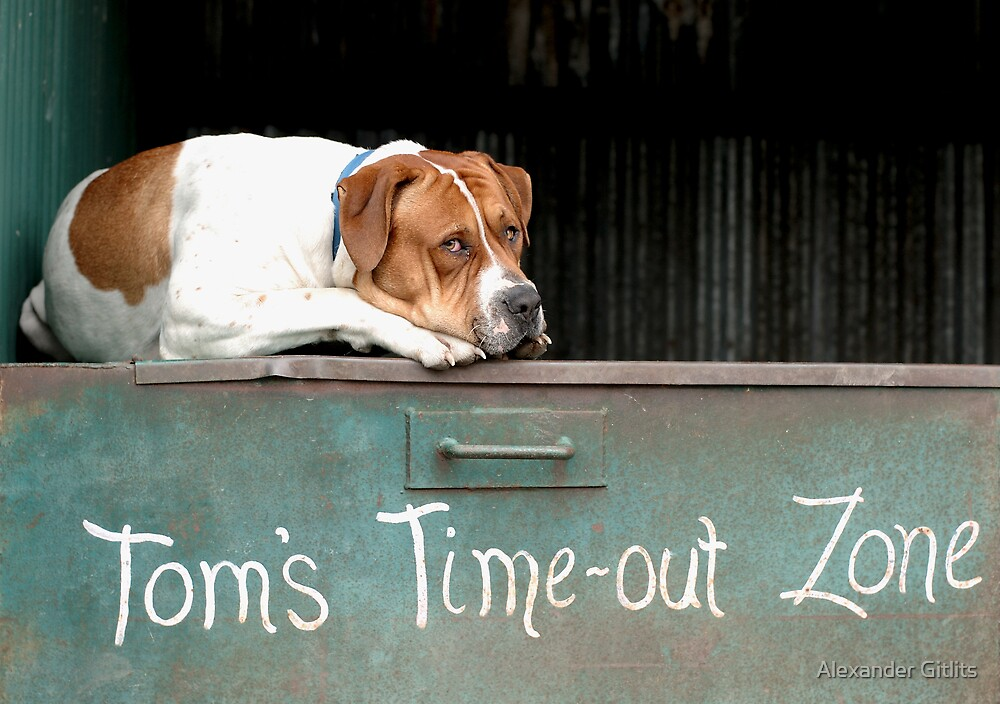 Tom's Time Out Zone 1 by Alexander Gitlits