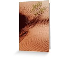 Lone Shrub and Sand Patterns, Simpson Desert Greeting Card