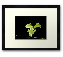 WDV - 509 - Tallon Fist Framed Print