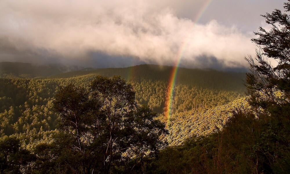 rainbow by Katie101