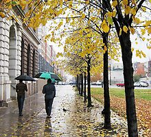 Autumn rain, New York City  by Alberto  DeJesus