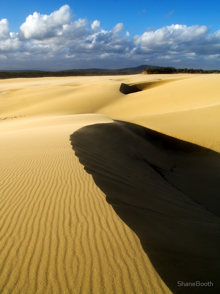 Sand Dunes by ShaneBooth