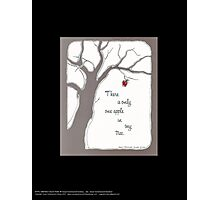 There is Only One Apple in My Tree Photographic Print