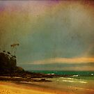 Greenfields Beach , Jervis Bay 2 by Lea Hawkins
