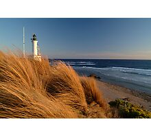 Wind Blown Grasses, Pt Lonsdale Lighthouse Photographic Print
