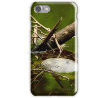 Turtles.. iPhone Case/Skin