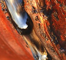 Leaking from a rusty drum by Mark Ingram