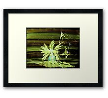 WDV - 516 - The Quiet Framed Print