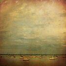 Callala Bay by Lea Hawkins