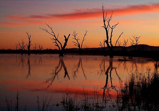 Lake Fyans Grampians by Joe Mortelliti