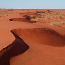 Simpson Desert,N.T. by Joe Mortelliti
