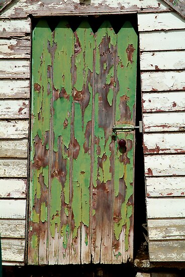 Out House, Dunny Door by Joe Mortelliti