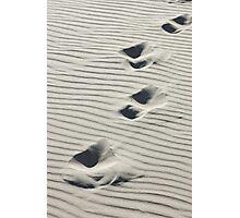 Across the Dunes Photographic Print