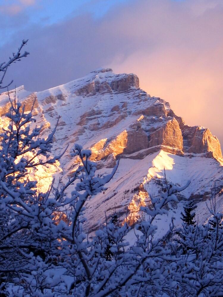 Winter - Banff by marklow