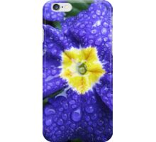 In every life some little rain must fall...Bluesy Primrose iPhone Case/Skin