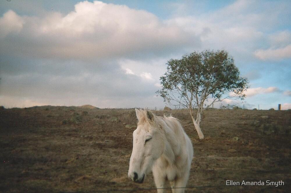 Ned by Ellen Amanda Smyth