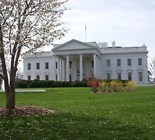 The White House by nathanh31