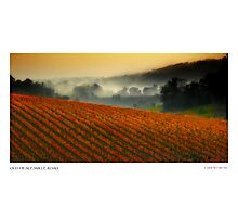 Old Healesville Road Photographic Print