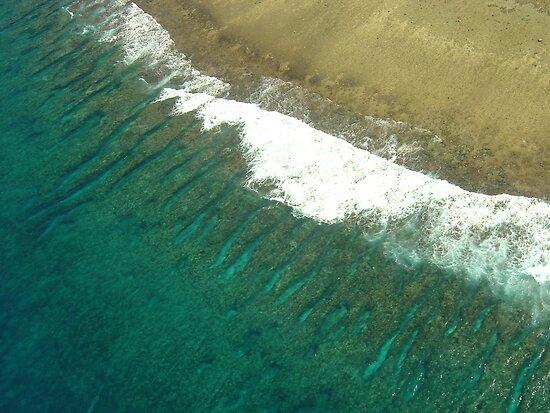 Reef Rim by jenitae