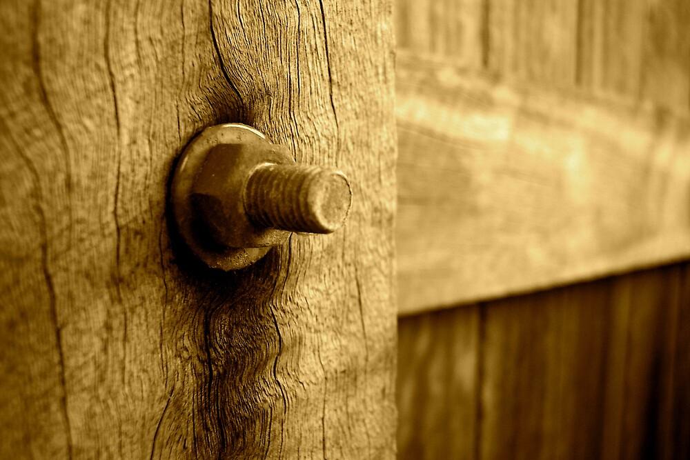 fenced by darkknight