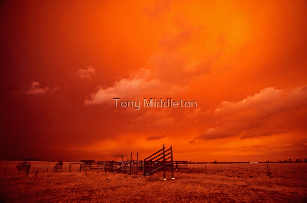 bushfire sky - Gippsland 2006 by Tony Middleton
