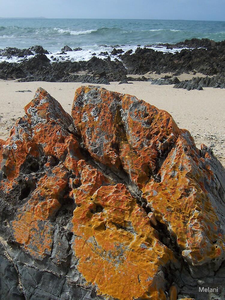 orange rocks by Melani