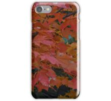 Colors of the past iPhone Case/Skin