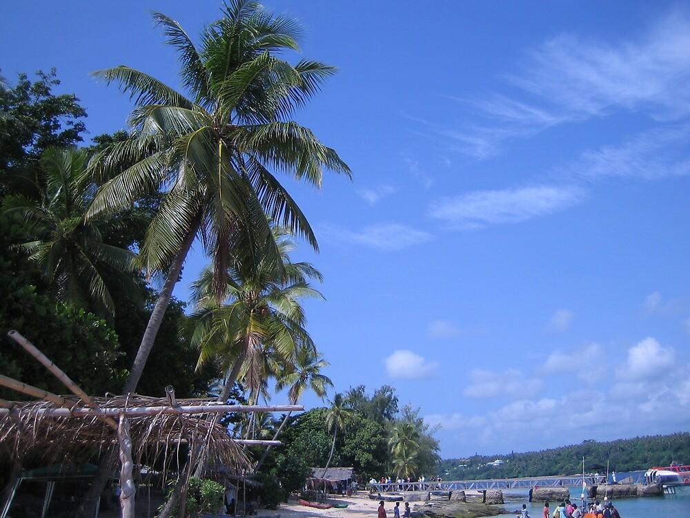 Wala, Vanuatu by nicky