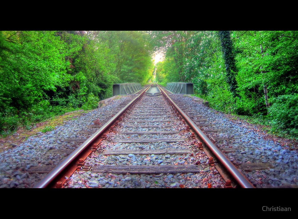 Forest Railroad Bridge by Christiaan