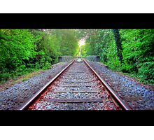 Forest Railroad Bridge Photographic Print