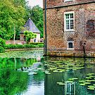 Castle Moat with Ducklings by Christiaan