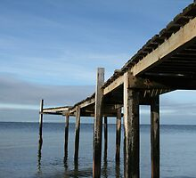 Pier at Campbells Cove by Charlotte Morison