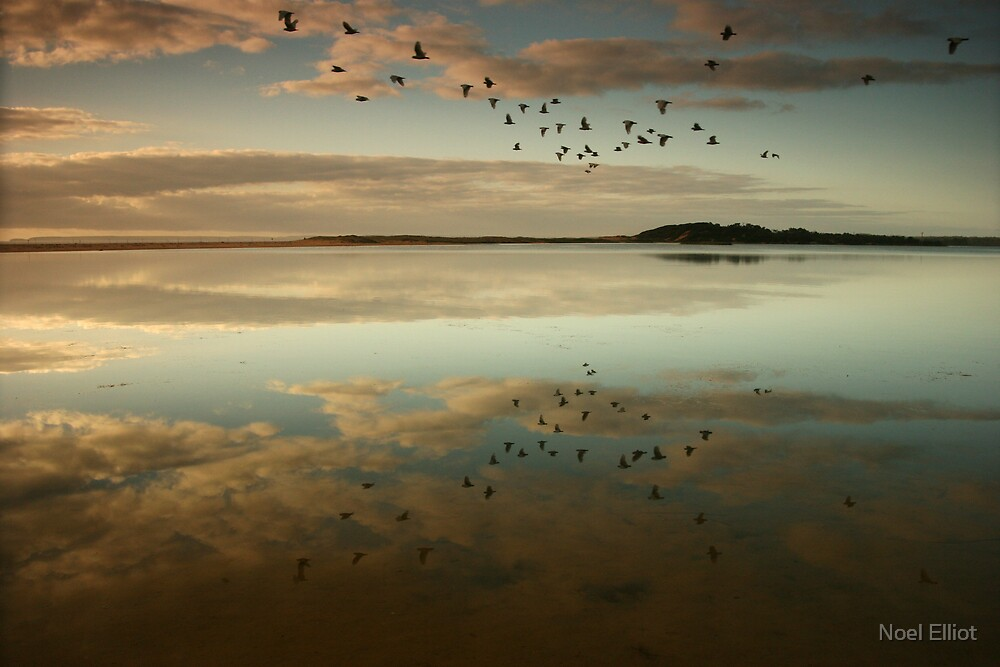 Lake Wollumboola Reflections by Noel Elliot