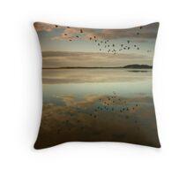 Lake Wollumboola Reflections Throw Pillow