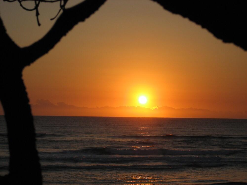 Sunrise Surfers Paradise Beach by Rohana