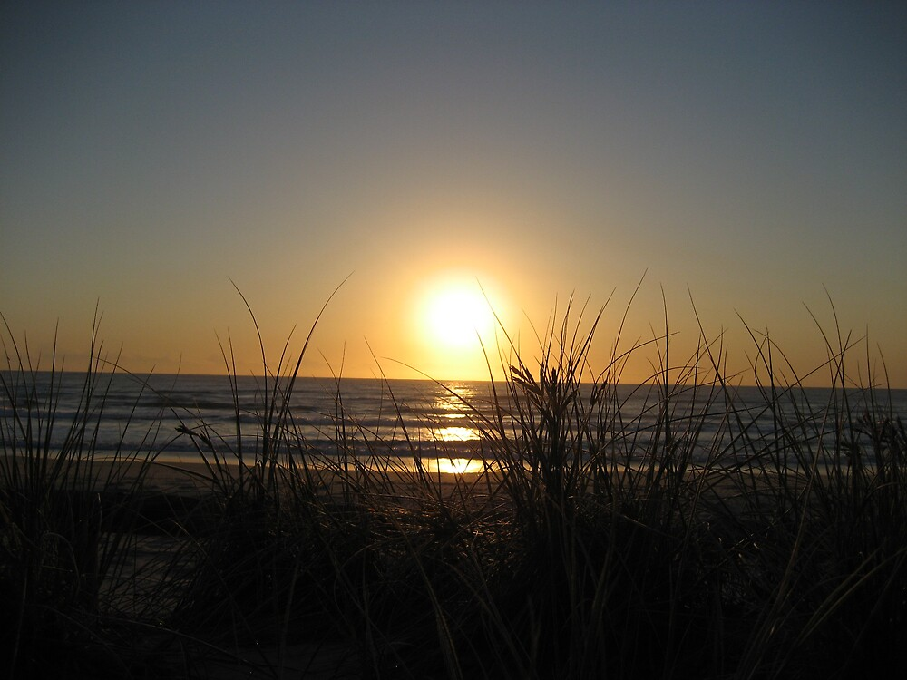 Sunrise thru the grass Surfers Paradise Beach by Rohana