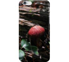 Red Capped Mushroom iPhone Case/Skin