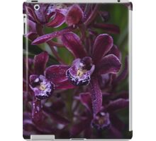 Miniature Cymbidium Orchid ( 6 ) iPad Case/Skin