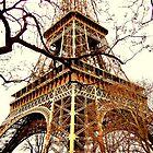 Rustic Eiffel by Leia