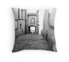 Pavement to Water Throw Pillow