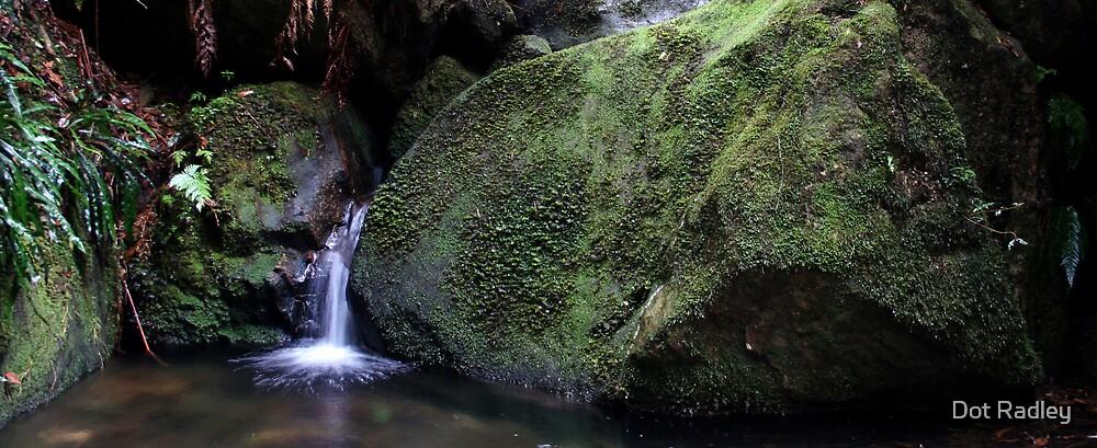 Green Falls by Dot Radley